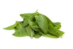 Mound of baby spinach leaves. Royalty Free Stock Images