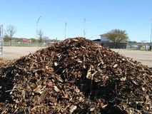 Mound of brown wood chips stock image
