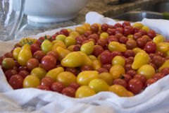 Mound of Cherry Tomatoes on Kitchen Counter Royalty Free Stock Image