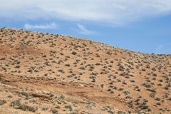 Unending Desert Sagebrush under Blue Sky/Clouds Royalty Free Stock Photo