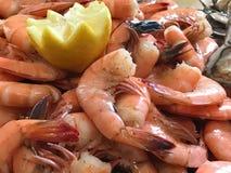 Mound of Fresh Peel and Eat Shrimp.  Stock Image