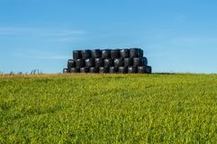 Mound of hay bales wrapped in plastic film to spend the bad weat stock photos