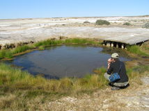 Mound Spring. A tourist admiring Mound Spring near Lake Eyre (Australia), sign of the Artesian Basin underlying the continent Stock Image