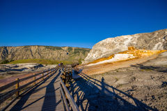 Mound Terrace , Mammoth Hot Springs area in Yellowstone National Park,USA Royalty Free Stock Photos