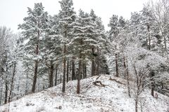 Mound in winter view Stock Image