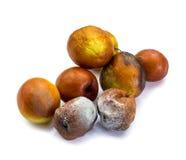 'Mounkey Apple' fruit Stock Photography