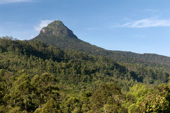 Mount Adam S Peak / Sri Pada Royalty Free Stock Image