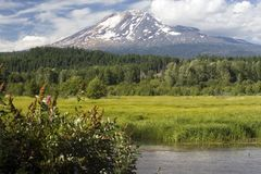 Mount Adams Royalty Free Stock Photography