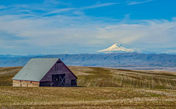 Mount Adams on an Early Spring Day royalty free stock photos