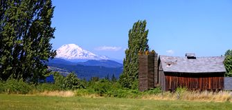 Mount Adams with Red Barn Stock Photography