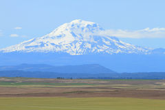 Mount Adams, Washington, U.S.A. Mount Adams and farm fields in Washington, U.S.A Royalty Free Stock Images
