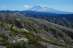 Mount Adams, Washington, USA Royalty Free Stock Images