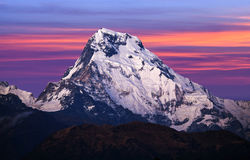 Mount Annapurna South, Nepal. Mount Annapurna South & x28;Moditse& x29; at sunset - view from Poon Hill on Annapurna Circuit Trek in Nepal Himalaya royalty free stock photos