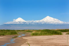 Mount Ararat in the clouds, view from Yeraskh with green reeds a. View of Mount Ararat from Yeraskh village surrounded by the white clouds Royalty Free Stock Photography