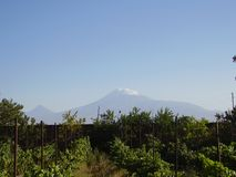 Mount Ararat. For many years is an inexhaustible source of inspiration for poets, musicians and artists Stock Photo
