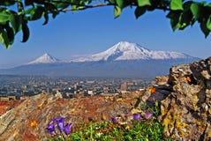 Mount Ararat och Yerevan stad fotografering för bildbyråer