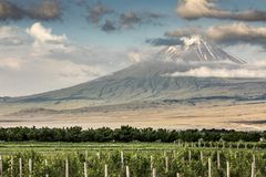 Mount Ararat in a landscape of Armenia. Mount Ararat in summer in a landscape of Armenia stock photo
