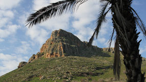 Mount Arbel framed by palm tree Royalty Free Stock Photography
