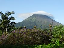 Mount Arenal in Costa Rica. Picturesque landscape, clouds cover the top of the mountain, around flowers, palm trees. Royalty Free Stock Photos