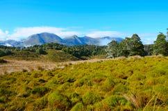 Mount Arthur area. Kahurangi National Park, New Zealand Stock Photography