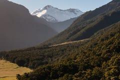 Mount Aspiring National Park Stock Images