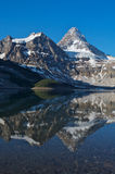 Mount Assiniboine Stock Image