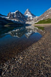 Mount Assiniboine Royalty Free Stock Photography