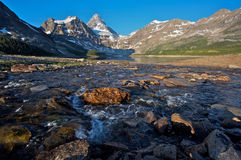 Mount Assiniboine Royalty Free Stock Photos