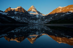 Mount Assiniboine with reflection Royalty Free Stock Image