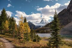 Free Mount Assiniboine With Autumn Forest On Lake Magog At Provincial Park Royalty Free Stock Photography - 171474817