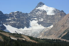 Mount Athabasca and Saskatchewan Glacier Royalty Free Stock Photography