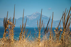 Mount Athos Royalty Free Stock Photography