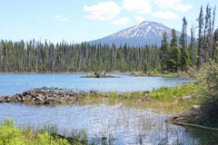 Mount Bachelor from Elk Lake Stock Photography