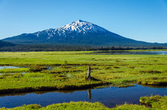 Mount Bachelor and Meadow Stock Images