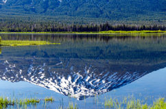 Mount Bachelor Reflection Stock Photos