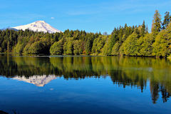 Mount baker. Reflected in Baker Lake in the Mt. Baker-Snoqualmie National forest Royalty Free Stock Images