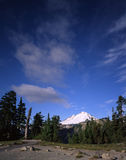 Mount Baker. Glacier covered Mount Baker in Washington State royalty free stock photos