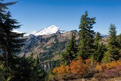 Mount Baker from Artist point Royalty Free Stock Photography