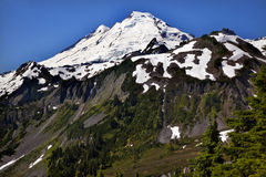 Mount Baker from Artist Point Washington State Royalty Free Stock Photography