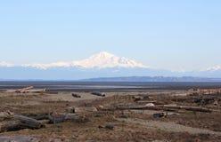 Mount Baker from Boundary Bay Stock Photo