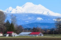 Mount Baker covered in Snow with Skagit Valley in foreground. Snow capped Mount Baker over red roofs of Skagit Valley farm Stock Photo