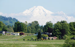 Mount Baker and Farm Country Stock Images