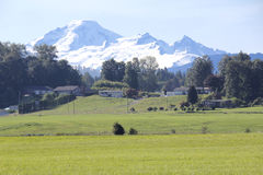 Mount Baker in the Fraser Valley Royalty Free Stock Photos