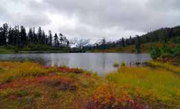 Mount Baker National Park Royalty Free Stock Images