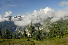 Mount Baker in Pacific Northwest Stock Photography