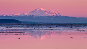 Mount Baker reflection Stock Photography