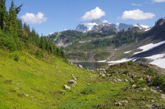 Mount Baker National Forest Royalty Free Stock Photos