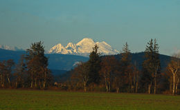 Mount Baker. Is a spectacular volcano in the North Cascades, the 3rd highest summit in the state of Washington Stock Images