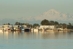 Mount Baker and Steveston. Steveston Harbor on the Fraser River at sunset in Richmond, British Columbia, Canada near Vancouver Royalty Free Stock Photography