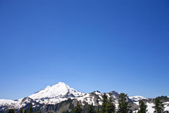 Mount Baker view from Artist Point. Mount Baker summit in Washington view from Artist Point Royalty Free Stock Images